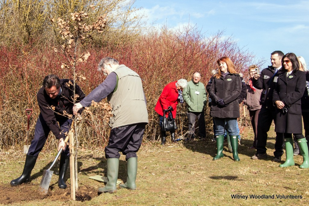 PM plants commemorative oak tree